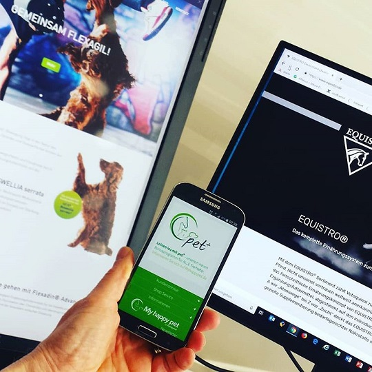 2017/06 Do You Really Need A Responsive Website?
